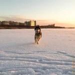 Первая прогулка по льду Лахтинского разлива