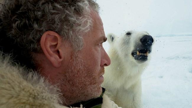 Кинооператор Бьюкенен оказался один на один с белой медведицей