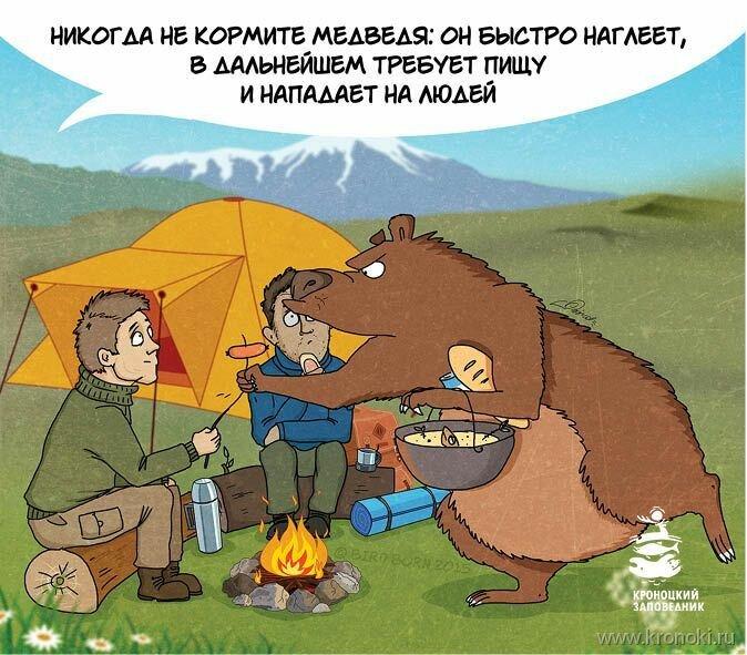 Туристы медведь
