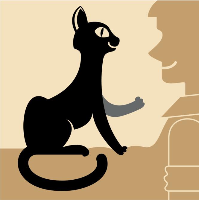 Как понять язык кота: Краткий человеко-кошачий словарь