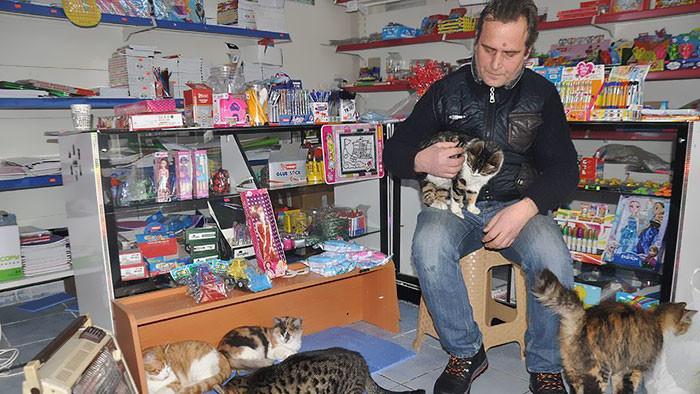 Именно так поступил Сельчук Байал, приютивший в своем магазине кошек