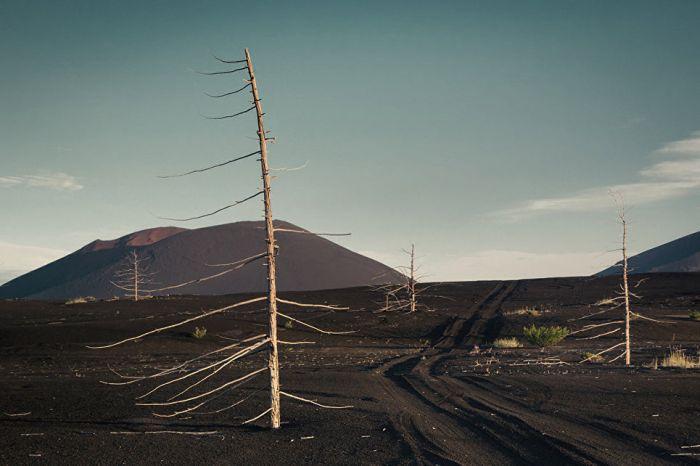 Извержение 1975 года засыпало пеплом некогда цветущий район. Уже больше 40 лет это место напоминает выжженную пустыню.