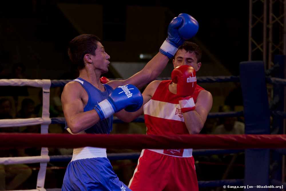 Соревнования по боксу класса А / Волгоград