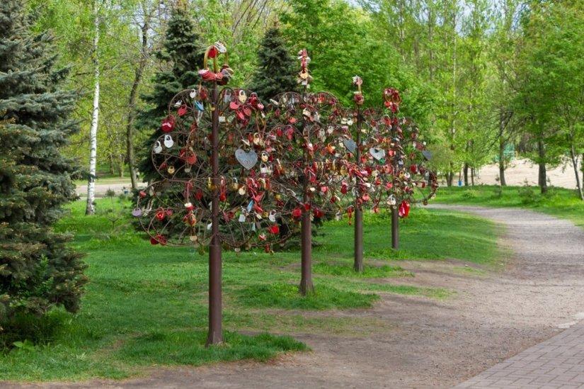 Деревья Любви, Ярославль
