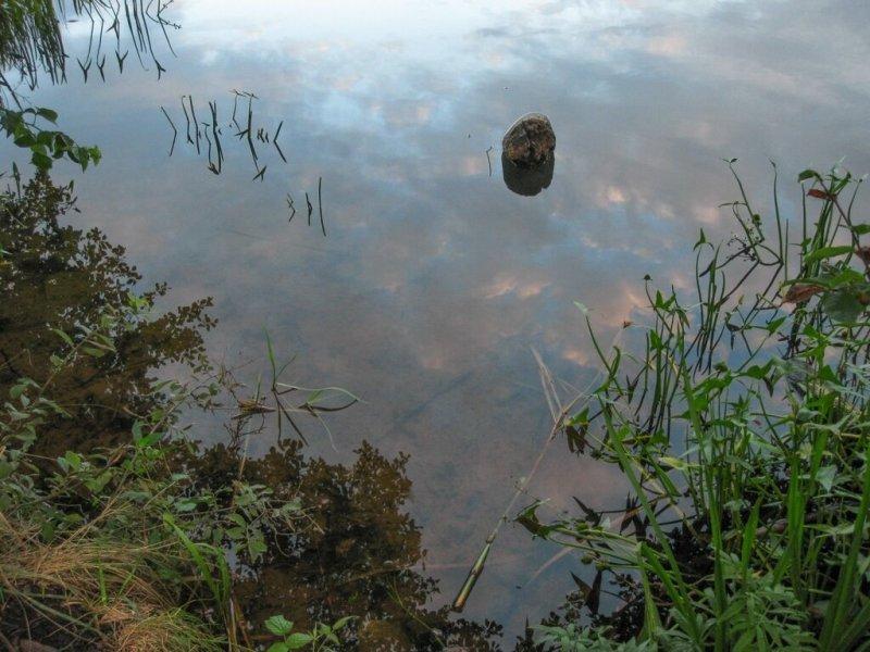 Калацкое озеро, Псковская область