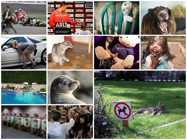 Чего здесь только нет! 50 смешных фотографий для ремонта настроения