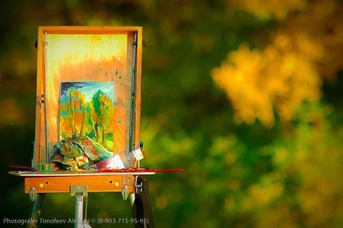 Фоторепортаж, Фотосессия, Фотограф, Тимофеев Алексей, Фотография DM-07-09-30 17-49-17