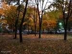Herbst-11