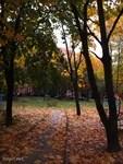Herbst-13