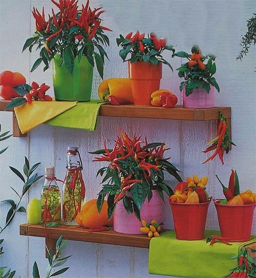 мексиканский декор на даче