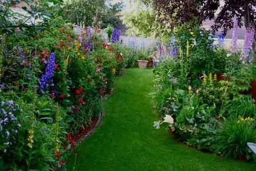 цветы в саду садовые цветы дизайн сада