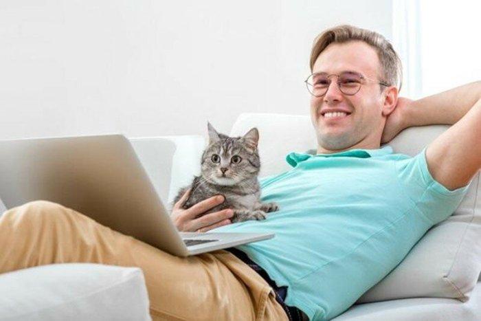 Почему кошка топчет вас лапками? Ученые сразили наповал!