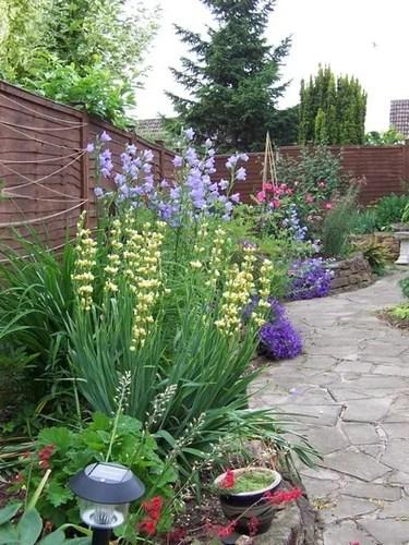 дорожки в саду фото
