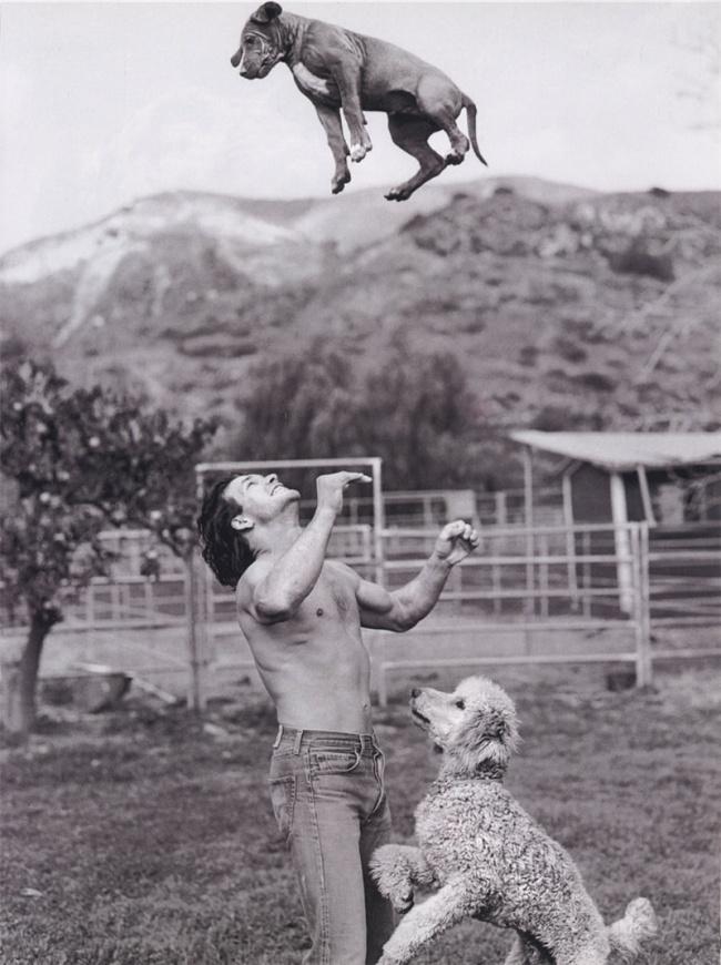 За каждым великим человеком стоит великий пес