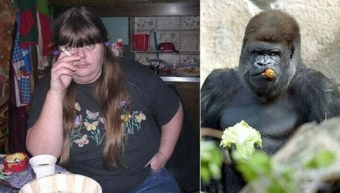 Люди и животные: фото для сравнения
