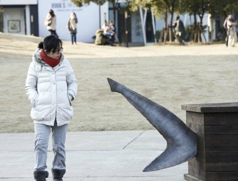 Гроб для акул в защиту морских хищниц