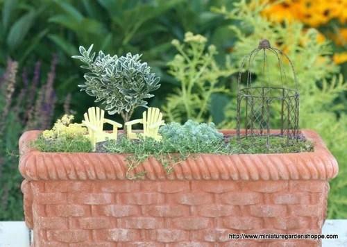 композиции из комнатных растений мини-сад 1