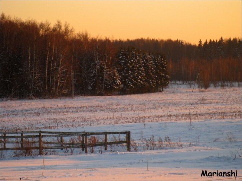 Левады, поле, лес...