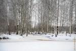 пейзаж, зимний пейзаж, природа, лес, снег, январь, 2013, природа, санкт-петербург, растения, снежинки, прогулки по лесу, озеро, лед