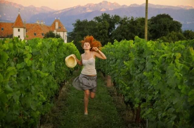 Рыжая, бегущая в швейцарских виноградниках