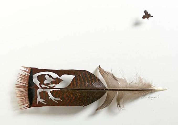 Американский художник превращает линяющие перья в произведения искусства