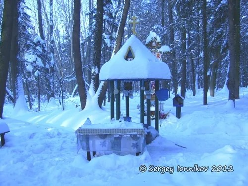 Андрушівка. Криниця в лісі. Лютий 2012