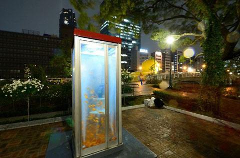 Арт-аквариум в телефонной кабинке. Команда Kingyobu. Осака