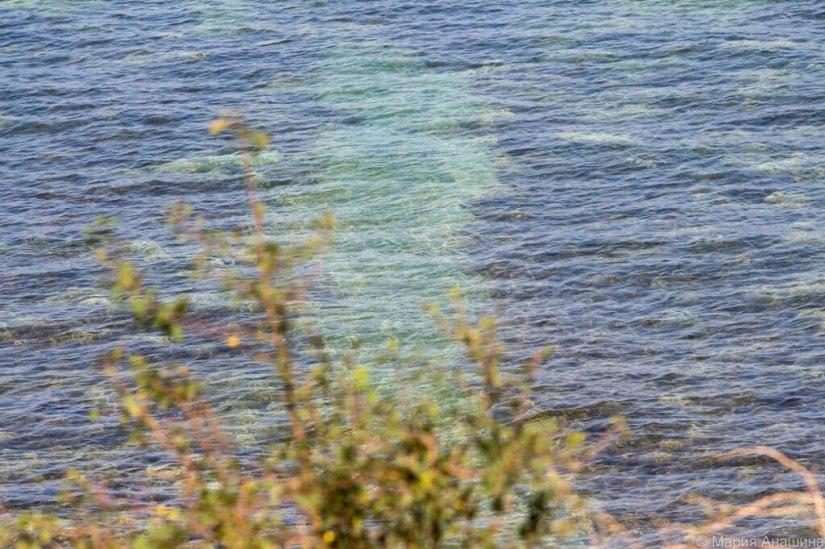 Толстый мыс, Черное море