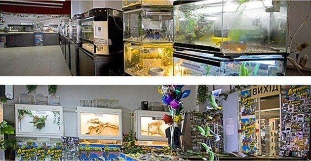 Зоологічна виставка «Джунглі парк» у Києві