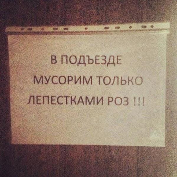 Смешные объявления на подъездах (фото)