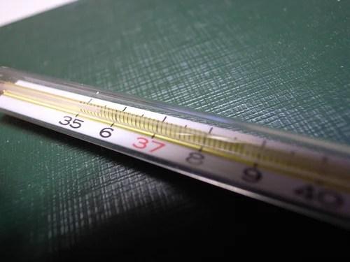 термометр, градусник
