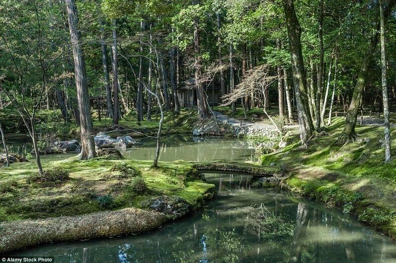 Буддистский монастырь Сайходзи, Япония. Монастырь Сайходзи был основан в промежутке между 710 и 794 годами в бывшей резиденции принца Сётоку.
