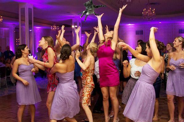 Если бы невесты вместо букетов бросали котов