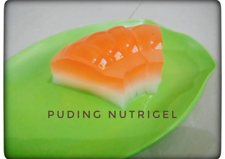 Puding nutrigel mangga