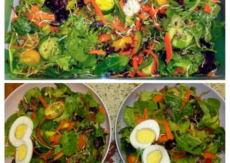 Protein Power Salad