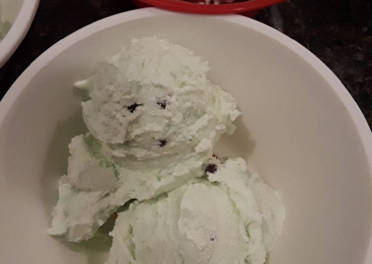 No Churn Mint Chocolate Chip Ice Cream