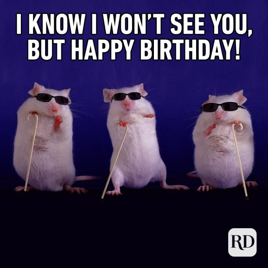 30 Of The Funniest Happy Birthday Memes