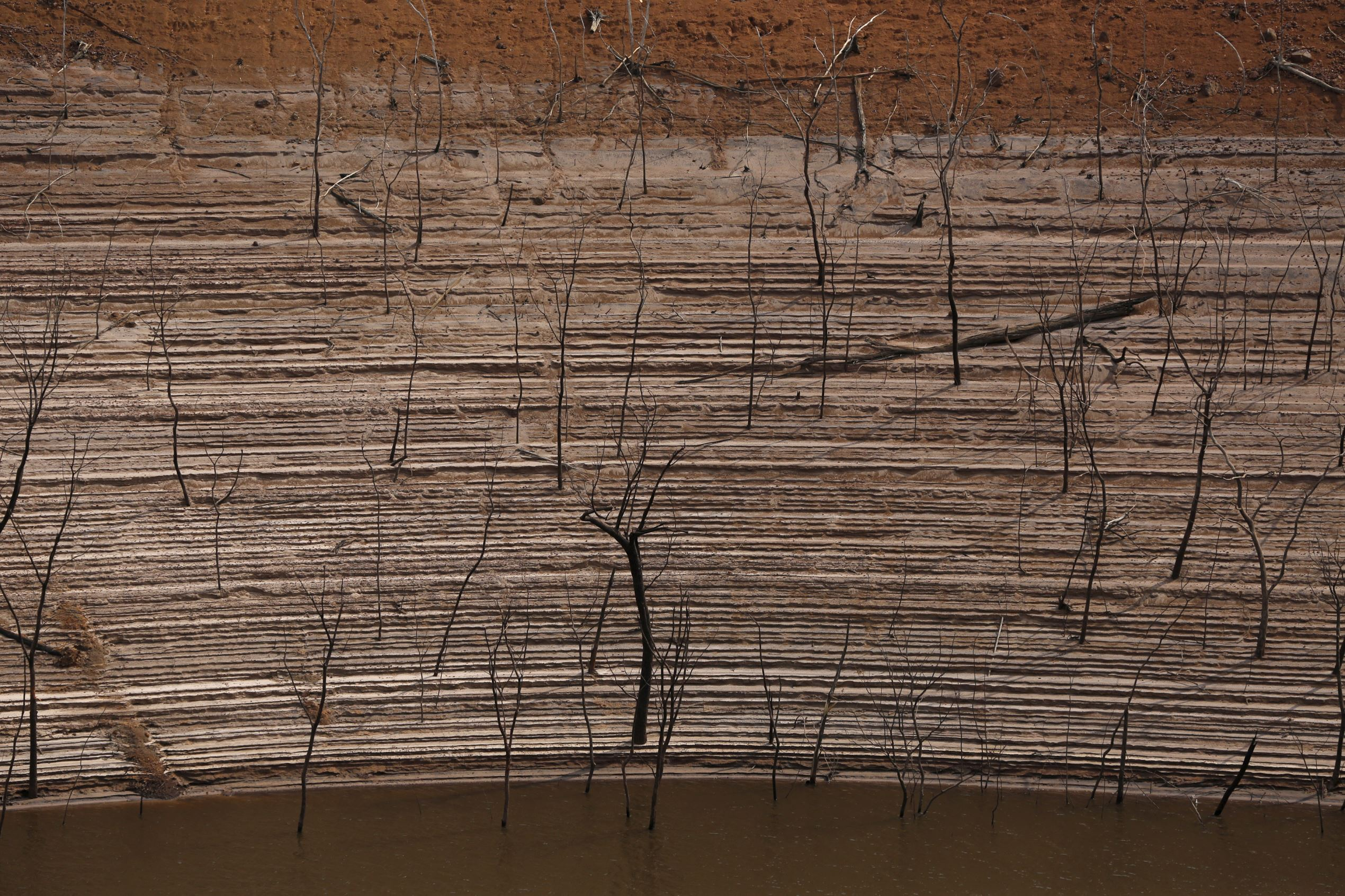 """Слайд 34 из 86: Trees and water marks are seen on previously submerged land at Guri dam in Bolivar state, Venezuela April 11, 2016. Drought has turned parts of Venezuela's Guri dam, one of the world's biggest, into desert, but the government is optimistic of rain within weeks to drive the vast installation that provides the bulk of the OPEC nation's power. REUTERS/Carlos Garcia Rawlins SEARCH """"GURI DAM"""" FOR THIS STORY. SEARCH """"THE WIDER IMAGE"""" FOR ALL STORIES TPX IMAGES OF THE ..."""