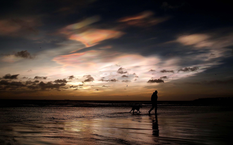 Слайд 19 из 86: A dog walker on the east coast near Whitley Bay, Northumberland, as rare Nacreous clouds form over the coastline.