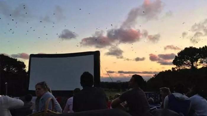 Сходите в кинотеатр на открытом воздухе