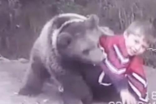 Khabib Nurmagomedov vs beruang
