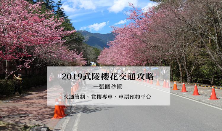 2019武陵櫻花交通攻略,一張圖秒懂 交通管制、賞櫻專車路線、車票預約平台 國光客運、豐原客運 過年旅遊