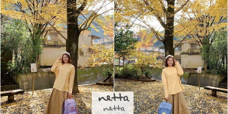 如何挑選出國旅行後背包?10大選購重點~這些細節你都注意到了嗎? (媽媽包也適用) - NETTA