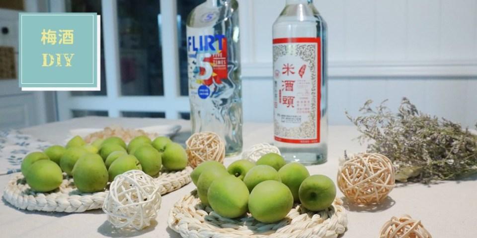 梅酒DIY做法,米酒、伏特加比例怎麼抓   梅酒怎麼做,一篇教你超簡單步驟