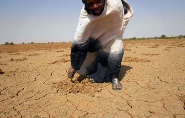 Famine au Sahel en 2012.