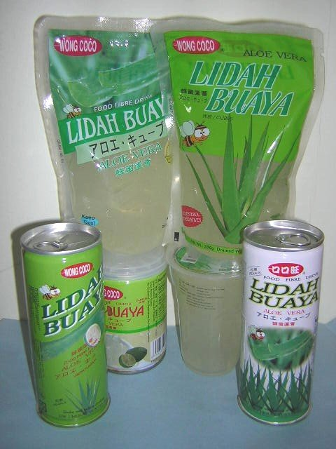 nata de coco lidah buaya