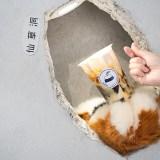【台南飲料】仙草洞裡出現毛茸茸的手掌!好萌好特別的創意飲料店「伴君耘 banjunyun」