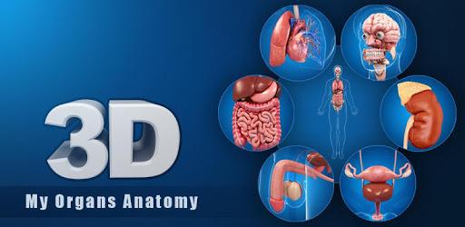 My Organs Anatomy apk
