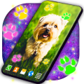 Cute Puppy Live Wallpaper 🐶 Dog Paws Wallpapers Icon