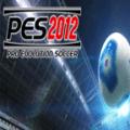 PES 2012 Icon